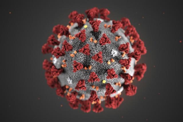Un equipo del Instituto de Virología e Inmunología de la Universidad de Berna (Suiza) dirigido por el profesor Volker Thiel, ha logrado por primera vez crear un clon sintético del virus. Este avance acelerará el desarrollo de vacunas y tratamientos contra la enfermedad de Covid-19 causada por el nuevo coronavirus. El método permite a los investigadores desactivar genes individuales del virus Covid-19 y lograr una vacuna más rápidamente.