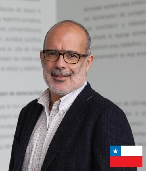 Rodrigo Valdés Pulido - webinar Camara chileno suiza