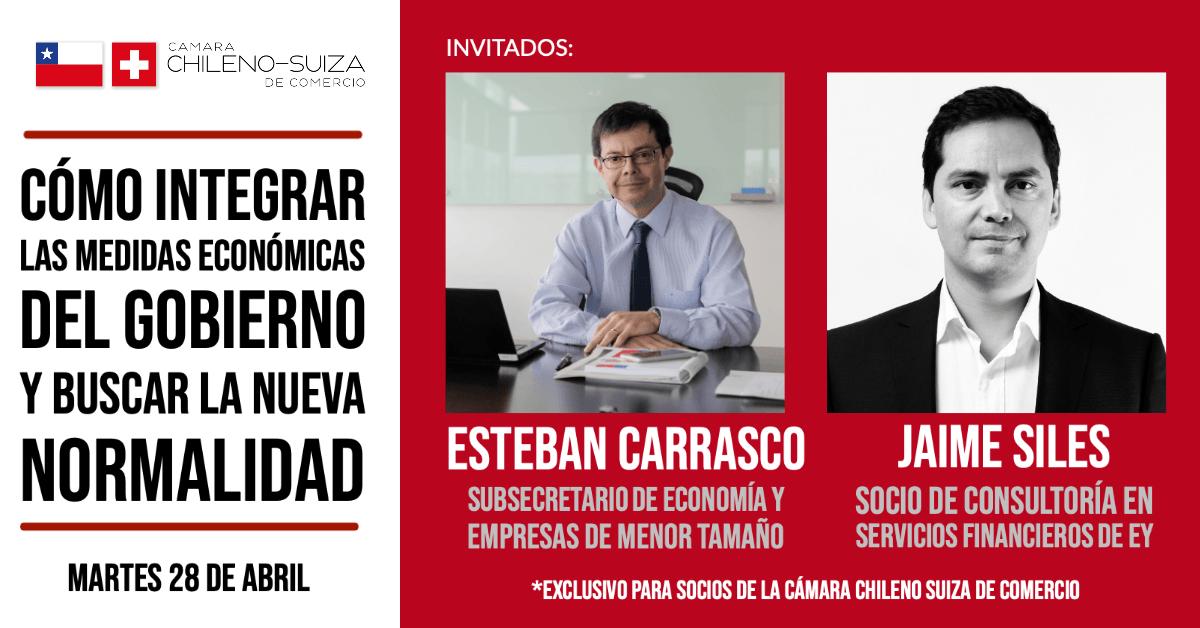 Webinar con el subsecretario de Economía, Esteban Carrasco