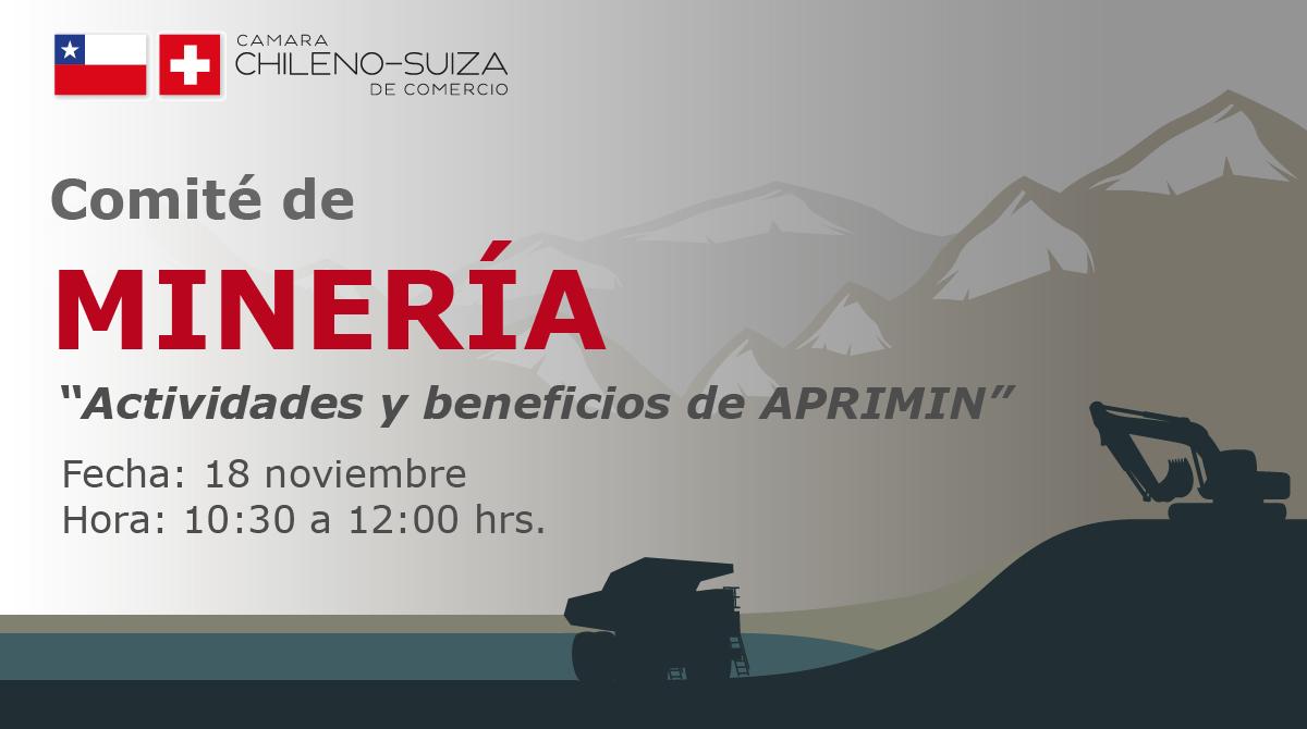 Comité de minería - Camara Chileno Suiza de Comercio
