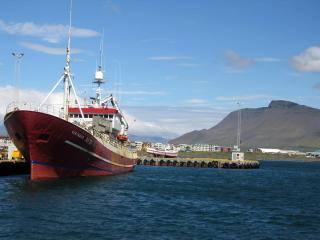 SICPA implementa sistema de verificación de desembarques pesqueros utilizando análisis de imagen e inteligencia artificial